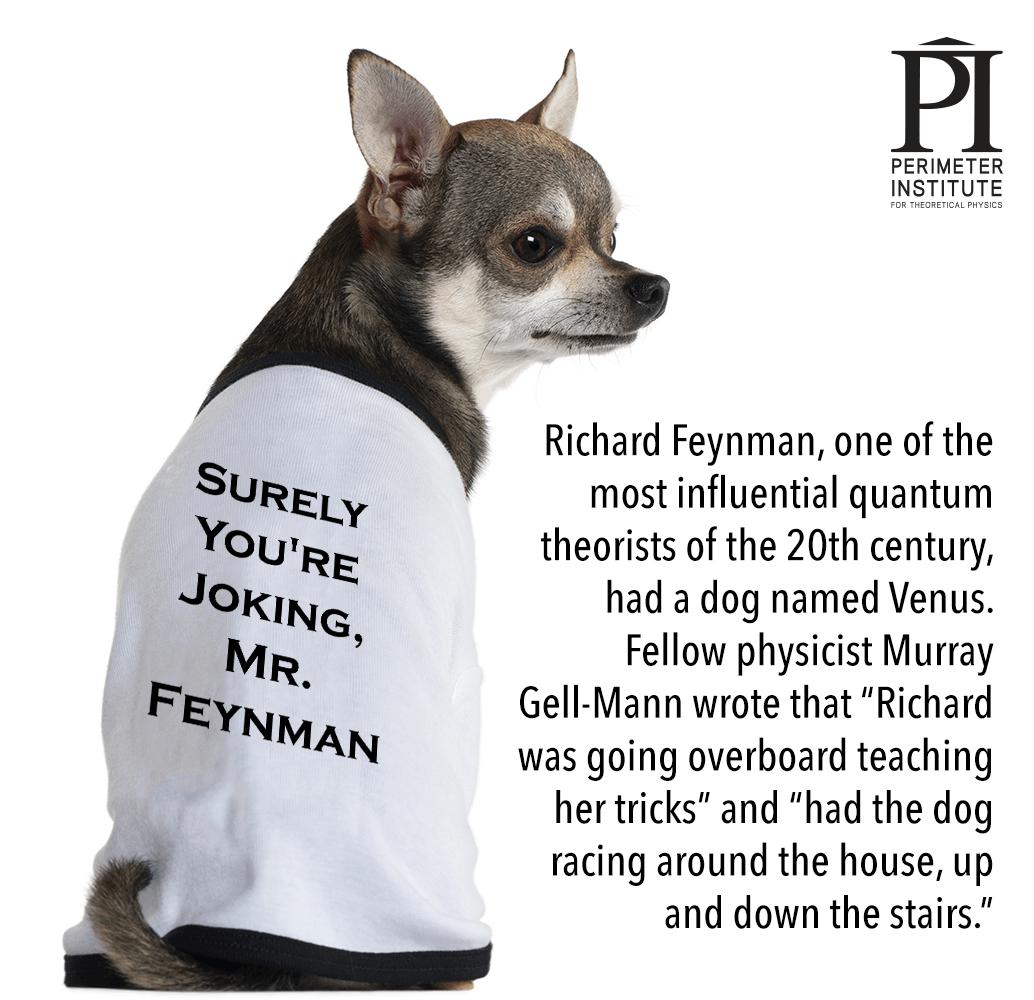 Feynman-dog