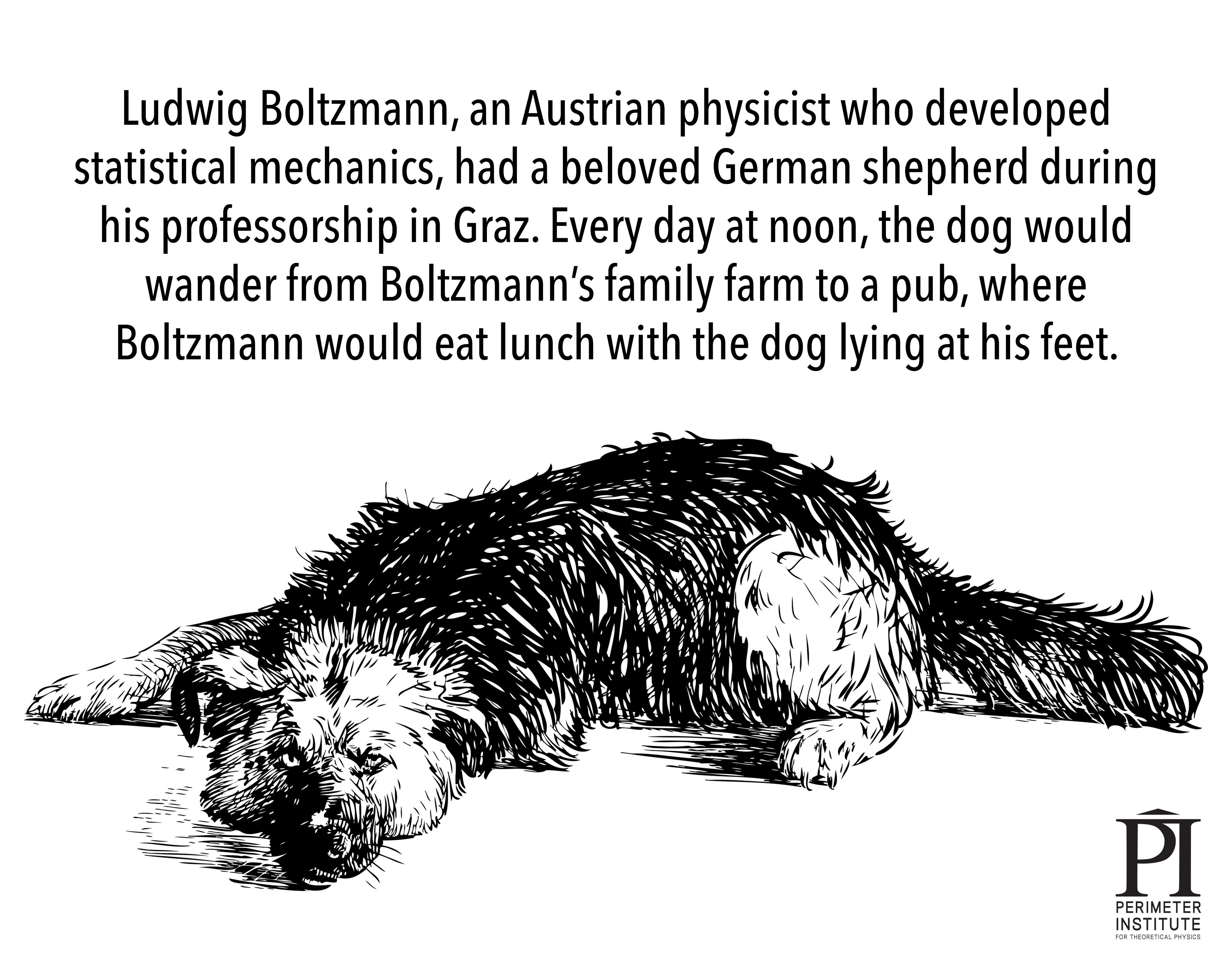 boltzman-shepherd