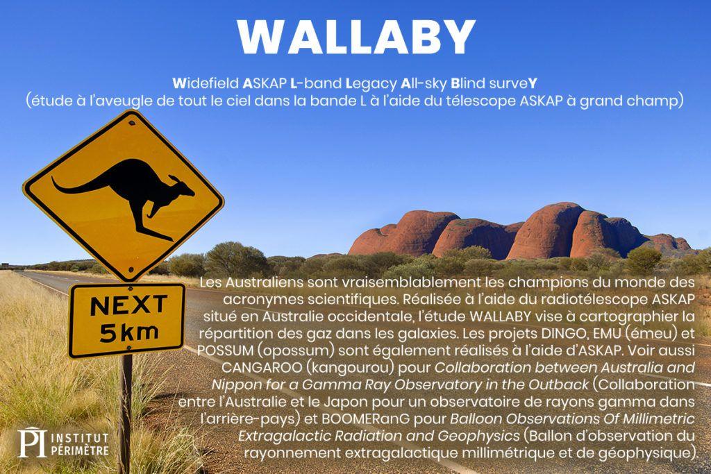 Route en Australie avec un panneau de signalisation mettant en garde les kangourous