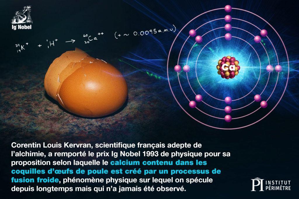 Gros plan, de, coquilles brun foncé, et, atome froid, fusion