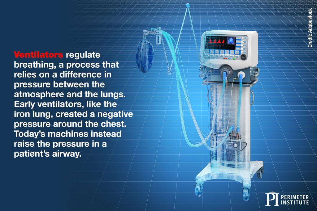 Ventilators regulate breathing, a process that relies on a difference in pressure between the atmosphere and the lungs. Early ventilators, like the iron lung, created a negative pressure around the chest. Today's machines instead raise the pressure in a patient's airway.