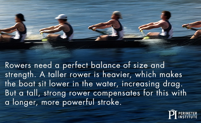 Team of rowers on a long skinny boat rowing together